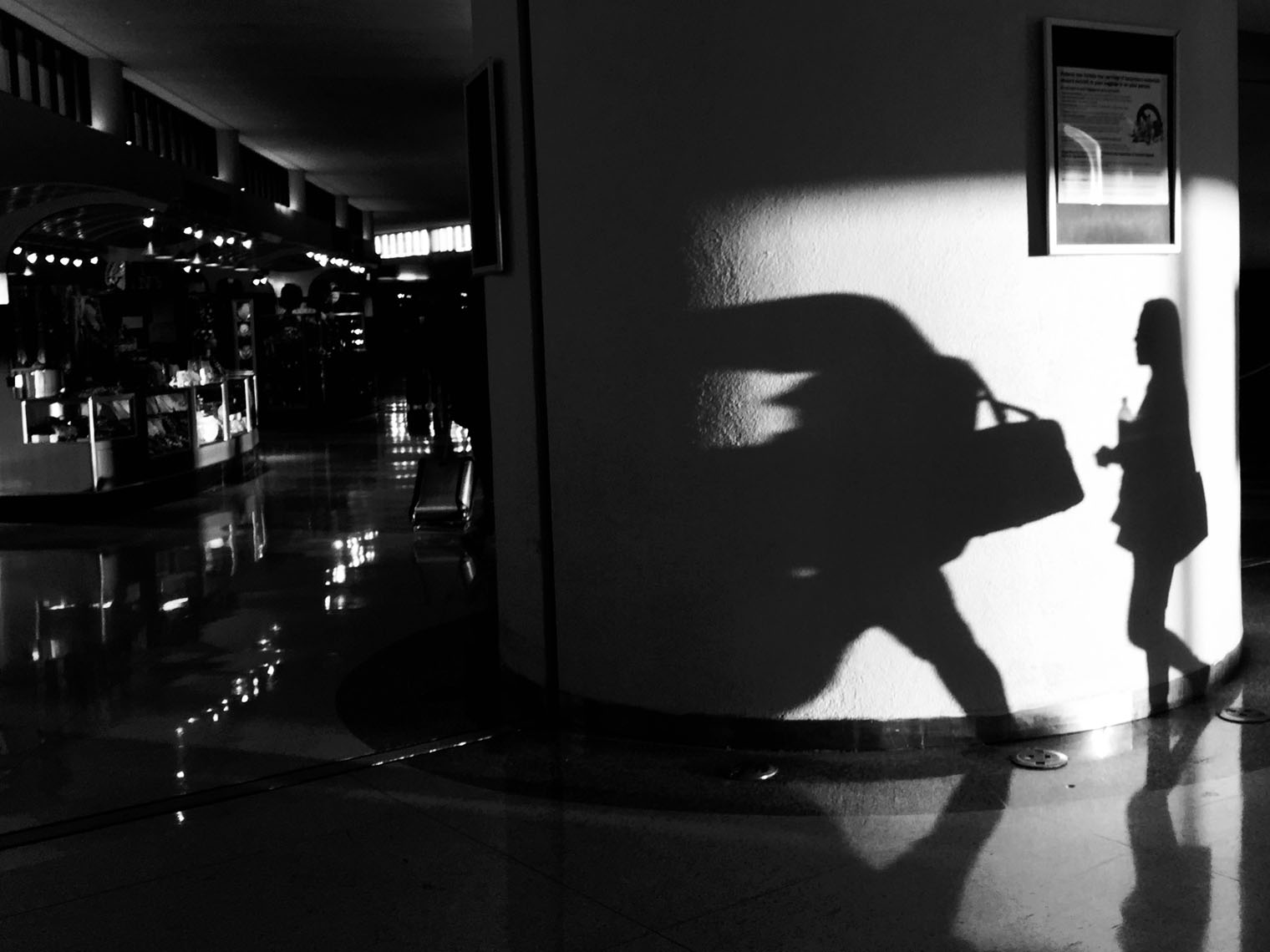 EWR_shadow